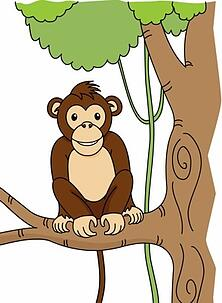 monkey on tree.jpg