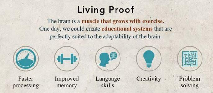 The Learning Success Blog | Educational Neuroscience